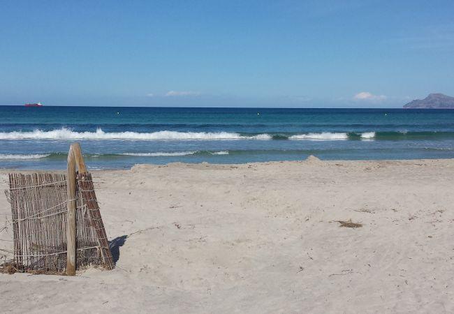Apartamento en Platja de Muro - M4R Ses Pins, Playa de Muro